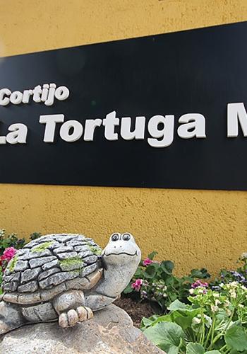 La Tortuga Mora
